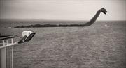 Quái vật hồ Loch Ness lội một giờ mấy cây?