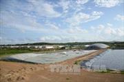 Phạt công ty Green Farm Asia 420 triệu đồng vì gây ô nhiễm