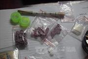 Bắt kẻ vận chuyển 1.800 viên ma túy tổng hợp