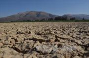 Chuyên gia dự báo 2016 là năm nóng nhất lịch sử nhân loại