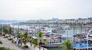 Tập đoàn Tuần Châu thu phí qua cảng với khách du lịch là bất hợp lý?