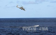 Con tin người Việt Nam đã được cướp biển Somalia trả tự do