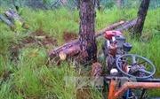Đắk Nông: Nổ súng tranh chấp đất rừng, 3 người chết tại chỗ