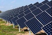Sắp xây nhà máy điện mặt trời hơn nghìn tỷ đồng tại Hậu Giang