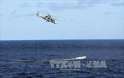 Hỗ trợ người Việt được cướp biển Somalia thả về nước
