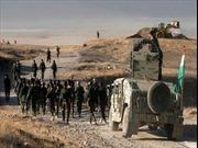 Thổ Nhĩ Kỳ tiêu diệt hàng chục tay súng IS tại Iraq