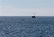 Thái Lan chặn giữ 5 tàu cá cùng 28 ngư dân Việt Nam