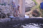Cá chết bất thường ở Sa Pa, nghi bị đầu độc