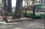 Tài xế xe buýt rút dao truy sát người dân