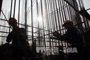 TP Hồ Chí Minh triển khai quy định mới về cấp giấy phép xây dựng
