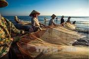 Bồ Đào Nha muốn tăng đầu tư vào kinh tế biển Việt Nam