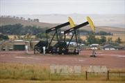 Venezuela ước tính thu về 9 tỷ USD sau thỏa thuận OPEC