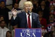 Hậu bầu cử Mỹ: Florida cũng sẽ phải kiểm lại phiếu bầu?