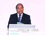 Cộng đồng doanh nghiệp Asean cần khởi xướng sáng tạo khởi nghiệp