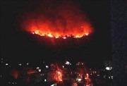 Lại cháy rừng tại thành phố Hạ Long