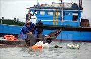 Cứu thành công 13 người trên tàu cá gặp nạn tại khu vực đảo Cồn Cỏ