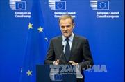 Giới chức châu Âu đánh giá kế hoạch Brexit của Thủ tướng Anh