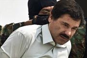 Dẫn độ trùm ma túy khét tiếng 'El Chapo' tới New York
