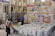Sớm tháo gỡ bất cập trong kinh doanh gạo xuất khẩu