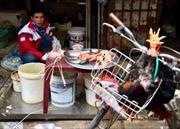 Vô tư giết mổ gia cầm tại chợ trong mùa dịch cúm