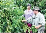 Vươn lên từ đói nghèo, trở thành người nông dân điển hình