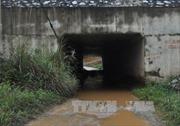 VEC phản hồi về những tồn tại ở dự án cao tốc Nội Bài - Lào Cai