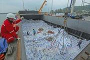 Cảng biển Dung Quất: Động lực phát triển của Quảng Ngãi