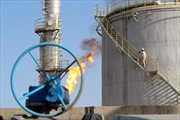 'Hiệp giao đấu mới' giữa OPEC và các nhà sản xuất dầu đá phiến Mỹ