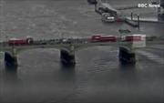 Nhảy xuống sông Thames tránh xe điên loạn của kẻ tấn công ngoài Quốc hội Anh