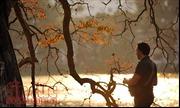 Hồ Gươm lãng mạn mùa lá đỏ trong chiều vàng