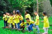 Cơ hội tìm hiểu thiên nhiên của hơn 1.158 học sinh mầm non
