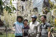 Khởi nghiệp từ đam mê lan rừng