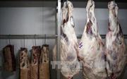Bê bối 'thịt bẩn' khiến xuất khẩu của Brazil có nguy cơ lao dốc