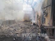 Cháy xưởng sản xuất bao bì, lửa và khói đen bốc cao ngút