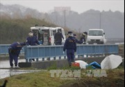 Việt Nam yêu cầu sớm tìm ra hung thủ sát hại bé gái người Việt tại Nhật Bản