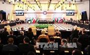 AL chú trọng Palestine trong tiến trình hòa bình Trung Đông