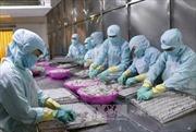 Quý I, kim ngạch xuất khẩu nông lâm thủy sản ước đạt 7,6 tỷ USD