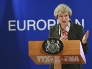Anh hy vọng sớm cùng EU thống nhất chính sách hải quan sau Brexit