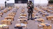 Colombia bắt mẻ ma túy hơn 6 tấn