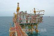PVN sẽ tăng khai thác khi giá dầu cải thiện
