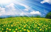 Thời tiết ngày 15/4: Miền Bắc mát mẻ, miền Nam nắng nóng