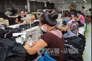 Lao động ngoài 30 tuổi bị nghỉ việc: Tiềm ẩn bất ổn về an sinh xã hội
