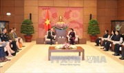 Chủ tịch Quốc hội tiếp Đại sứ Australia và Đại sứ New Zealand