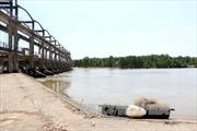 Nửa cần nước ngọt, nửa cần nước mặn, Bến Tre loay hoay vận hành cống đập Ba Lai