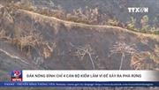Đắk Nông đình chỉ 4 cán bộ kiểm lâm vì để xảy ra phá rừng