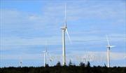 Khởi công Dự án Nhà máy điện gió Đầm Nại