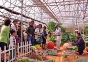 Hơn 1.000 tỷ đồng phát triển nông nghiệp công nghệ cao tại Đắk Lắk