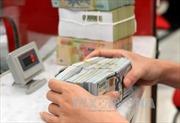 Tỷ giá trung tâm giảm 1 đồng trong sáng đầu tuần