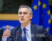 Các quốc gia thành viên NATO tăng chi tiêu quốc phòng