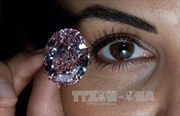 Chiếc nhẫn kim cương 26 cara được bán với giá 'đồng nát'